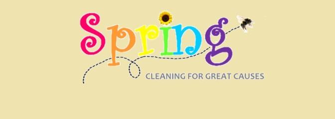 SpringCleanUpForAuction